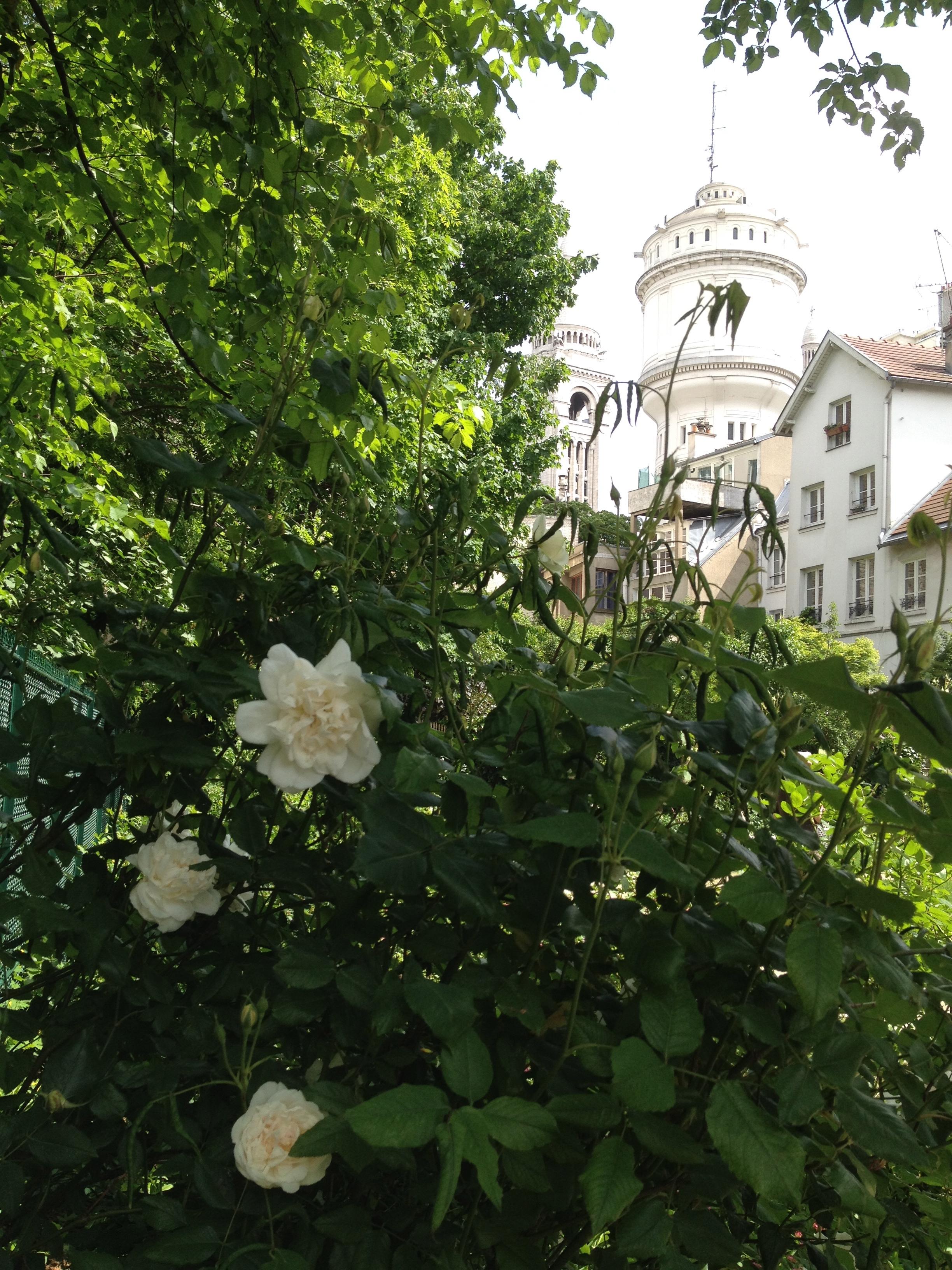 montmartre-jardins-renoir-pds13
