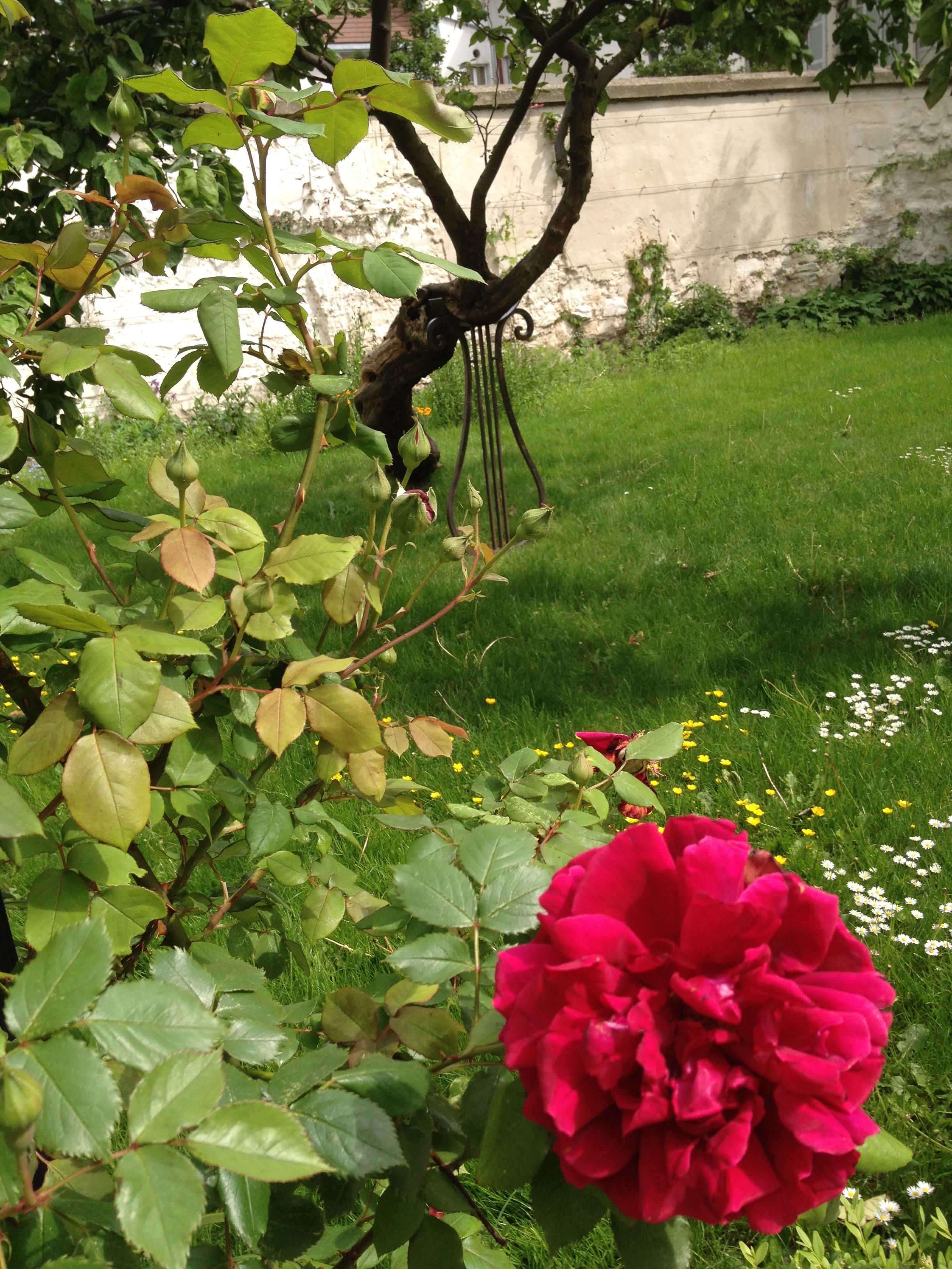 montmartre-jardins-renoir-pds7